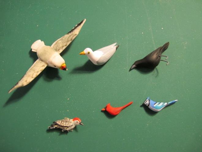 purchasedbirds